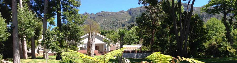 Running lawns on the Upper Constantia Property